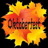 Carta di Oktoberfest Testo scritto a mano di Oktoberfest Acero della foglia Fotografia Stock Libera da Diritti