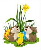 Carta di pasqua con i coniglietti ed il pollo Immagini Stock