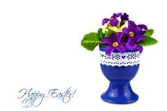 Carta di pasqua con i fiori della molla Fotografia Stock Libera da Diritti