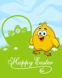 Carta di pasqua con le uova decorate ed il pollo sveglio Fotografie Stock Libere da Diritti