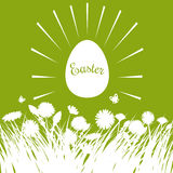 Carta di pasqua con le uova ed i fiori Fotografie Stock
