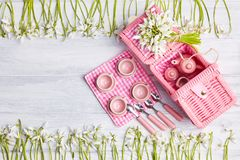 Carta di picnic con la regolazione della tavola ed i bucaneve, argenteria, tovagliolo controllato bianco di rosa fotografie stock libere da diritti