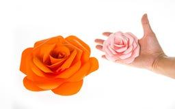 Carta di Rosa Fotografie Stock Libere da Diritti