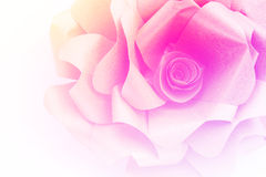 Carta di Rosa con la pendenza immagini stock libere da diritti