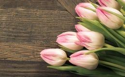 Carta di seppia con i tulipani rosa su fondo di legno Fotografie Stock Libere da Diritti