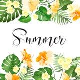 Carta di vendita di estate illustrazione di stock