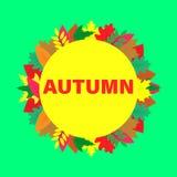Carta di vettore con le foglie di autunno variopinte Fotografia Stock