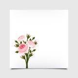 Carta di vettore con le rose rosa Eps-10 Fotografia Stock Libera da Diritti