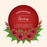 Carta di vettore del fiore dell'ibisco che estrae a mano Fotografia Stock