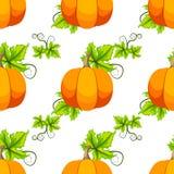 Carta di vettore della zucca di Halloween Fotografie Stock
