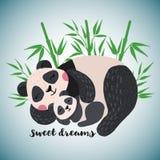 Carta disegnata a mano con i panda svegli di sonno royalty illustrazione gratis