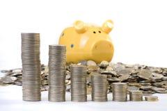 Carta do banco Piggy e das moedas Imagens de Stock