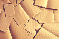 Carta e blocco note vuoti del taccuino di Manny Fotografia Stock