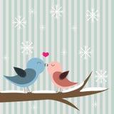 Carta felice del giorno dei biglietti di S. Valentino con l'uccello Fotografia Stock