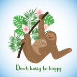 Carta felice di giorno di madri con i bradipi svegli illustrazione vettoriale