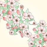 Carta floreale con il posto per il vostro testo Illustrazione di Stock