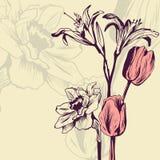 Carta floreale d'annata illustrazione di stock