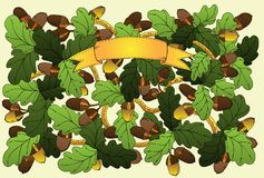 Carta floreale di vettore con le foglie e le ghiande della quercia. Royalty Illustrazione gratis