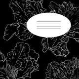 Carta floreale nera illustrazione vettoriale