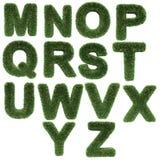 Carta hecha de hierba ilustración del vector