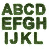 Carta hecha de hierba stock de ilustración