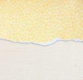 Carta lacerata con il modello funky sopra il fondo strutturato della tela Fotografia Stock Libera da Diritti