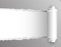 Carta lacerata con l'apertura che mostra fondo bianco. Fotografia Stock Libera da Diritti
