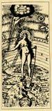 Carta - mulher ilustração stock