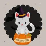 Carta o fondo di Halloween con il gatto bianco Immagini Stock
