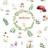 Carta sbalorditiva con i funghi svegli e le foglie fatti nella tecnica dell'acquerello Fotografie Stock