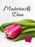 Carta slovena di giorno del ` s della madre con le parole Materinski Dan Fotografia Stock Libera da Diritti