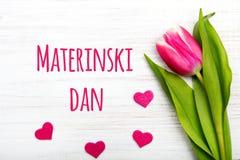 Carta slovena di giorno del ` s della madre con le parole Materinski Dan Immagine Stock Libera da Diritti