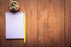 Carta succulente del taccuino e della matita in vaso sullo sfondo naturale di natura morta di legno della tavola, piante del cact Fotografie Stock Libere da Diritti