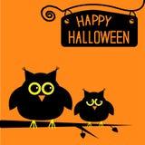 Carta sveglia felice dei gufi di Halloween. Fotografia Stock