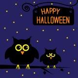 Carta sveglia felice dei gufi di Halloween. Notte stellata. Immagine Stock
