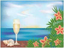 Carta tropicale con champagne Fotografia Stock