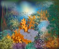 Carta tropicale subacquea, vettore Immagine Stock Libera da Diritti