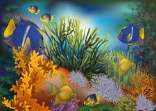 Carta tropicale subacquea, vettore Fotografie Stock