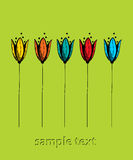 Carta verde del tulipán Fotos de archivo
