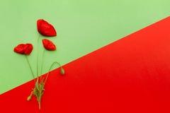 Carta verde rossa floreale Fotografie Stock