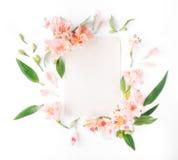 Carta vuota con alstroemeria, le foglie ed i petali sul backgro bianco Fotografia Stock Libera da Diritti