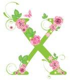 Carta X con las rosas Imagenes de archivo