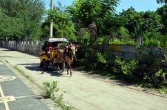 Cartage on Gili Trawangan Stock Photography