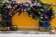CARTAGENA, КОЛУМБИЯ 22, 2017: Закройте вверх велосипеда припаркованного на outdoors в улице города Cartagena с красочными зданиям Стоковая Фотография