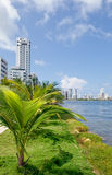 Cartagena city waterfront Royalty Free Stock Photo