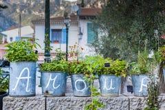Cartas de amor do caso amoroso redigidas em vasos de flor Imagem de Stock Royalty Free