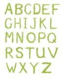 Cartas del alfabeto de la hierba verde aisladas en blanco Imágenes de archivo libres de regalías