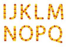Cartas del alfabeto de las hojas de otoño Fotos de archivo libres de regalías