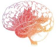 Cartas del cerebro stock de ilustración