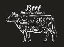 Cartas del corte de la carne Vaca, concepto de la carne de vaca Restaurante del menú o carnicería Ilustración del vector stock de ilustración